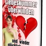 cover_liebeskummer2